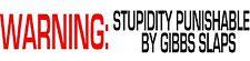 WARNING: Stupidity Punishable By Gibbs Slaps NCIS Vinyl Decal Sticker