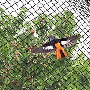 Wildlife Garden Anti Bird Protection Net Crops Vegetables Fruit Cage Netting