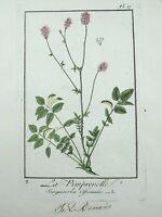 1801 R. Turpin - Burnets - LARGE PAPER EDITION original hand colour