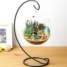 Hanging Glass Flowers Plant Vase Stand Holder Terrarium Container Wedding D T2H1