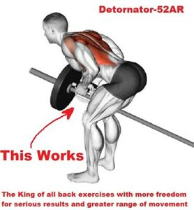 T-BAR ROW / BENT OVER ROW CLOSE GRIP LANDMINE HANDLE LAT EXERCISE BACK EXERCISE