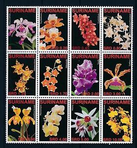 [SU1419] Suriname Surinam 2007 Flora Flowers Orchids MNH