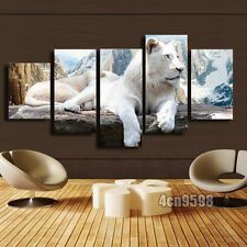 HD Canvas Print home decor wall art painting White Leopard 5pc(no frame)#124