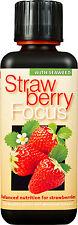 FRAGOLA Focus Pianta Cibo-Nutrienti Per Fragola Pineberry ECC. ml.300