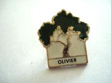 PINS ARBRE OLIVIER FONDATION FORET