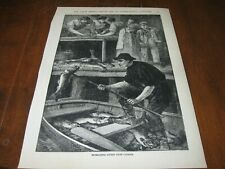 1886 Art Print Engraving - Extracting LIVERS from CODFISH OIL Fish FISHING