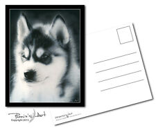 Postcard - Siberian Husky Puppy - Charcoal - Lot of 2
