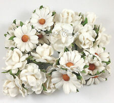 30 White Daisy Roses Mulberry Paper Flowers Wedding Headpiece Scrapbook ZB3-15