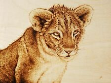 "LION CUB ""LITTLE MISS CURIOSITY"" PYROGRAPHY/DRAWING WITH FIRE/WOODBURNING ART"
