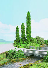 K & M P600 4 x 125mm Poplar Trees Green New Multi-Pack