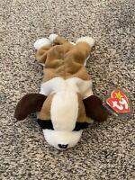 Ty Beanie Baby BERNIE Dog  w/ Tag ERRORS Plush Toy RARE PVC RETIRED