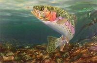 End of Rainbow by Randy McGovern Fish Trout Print  12.75 x 9.25