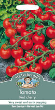 Mr Fothergills Tomato Red Cherry Seed