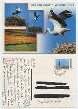 59234 - Weißstorch - Bocian Bialy - polnische Ansichtskarte gelaufen 21.5.2008