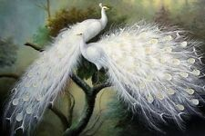 hand-painted oil painting beautiful white peacock art deco painting (no framed)