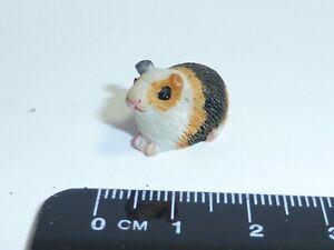 1:12 Scale Guinea Pig c2 Dolls House Miniature Pet Accessory