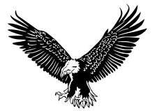 Eagle vinyl car Decal / Sticker