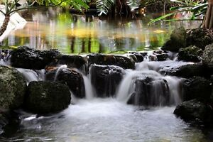 "8 1/2 x 11"" HQ PRINT PHOTO of TIME EXPOSURE of MOVING WATER in a CREEK RELAXING"