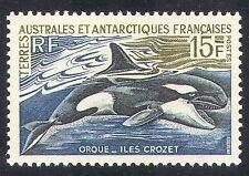 FSAT/TAAF 1963 Orca/Killer Whale/Marine/Nature/Wildlife 1v (n27836h)