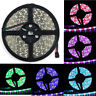 16.4ft 5M 300Leds 5050 SMD RGBW / RGBWW LED Strip Light Lamp RGB+Cool/Warm White