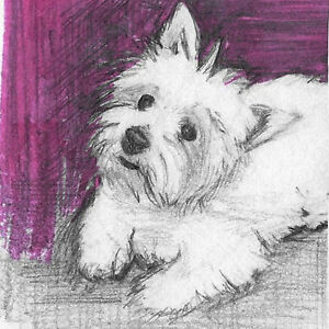 West Highland White Terrier 4X4 Drawing Puppy Dog Art Fun Pink Detail