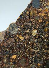 Meteorite*Nwa provisional type 3 *1.275 Grams, Insane Chondrules!Wow!
