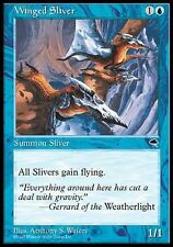 ▼▲▼ Winged Sliver (Slivoïde ailé) TEMPEST #106 ENGLISH Magic MTG