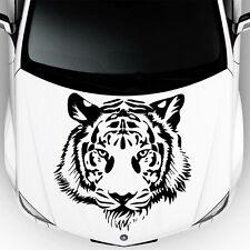 Wild Tiger Predator Cat in Car Hood Vinyl Stickers Decals Animals Decor OS25