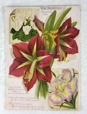 Fall 1889 Bulb Catalog Cover Peter Henderson NY Amaryllis Iris Chromolithograph