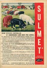 1948 Print Ad of American Cyanamid Lederle Labs Sulmet Swine Disease Pig Farm