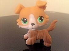 Littlest Pet Shop Yellow White Collie Puppy Dog #272 Green Eyes USA Seller