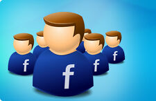 1000 Real and Active Global Facebook Fan Page Fans / Likes