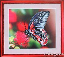 Butterfly Schmetterling Stickpackung Stickbild Stickset sticken Perlen 175