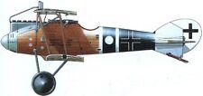 LFG Roland D.VI German Fighter Aircraft Mahogany Wood Model Large New