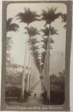 Brazil - Jardin Botanique 7,1 x 4,5 inches. Marc Ferrez. c 1890's. Brazilian.