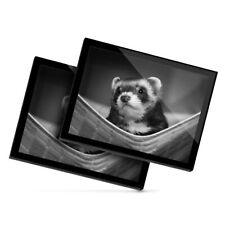 2x Glass Placemats 20x25 cm - Bw - Ferret Hammock Pet Rodent Animal #37246