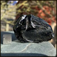 Mylonite Educational Classroom Rock Skye RSE491 ✔100/% Genuine Metamorphic