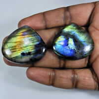 128Cts.Natural Labradorite Multi Fire Pear Cabochon Loose Gemstone 2Pcs Lot q839