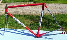 Pagnini Telaio acciaio bici corsa eroica vintage