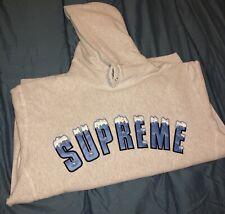Supreme Icy Arc Hooded Sweatshirt Ash Grey Size Large F/W 2020
