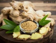 ORGANIC Dried Ginger Root Powder 100% Pure From Ceylon Spices 50g,100g