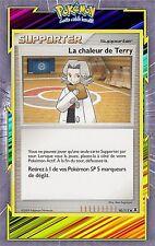 La chaleur de Terry - Platine 02 - 90/111 - Carte Pokemon Neuve Française