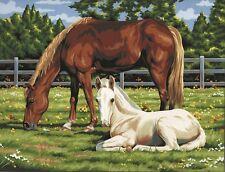 Royal & Langnickel PCL2 Malen nach Zahlen Pferde auf der Weide