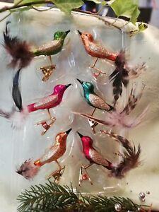 Christbaumschmuck Krebs Glas Lauscha 6Multicolor Mini Vögel auf Clip 8/9cm handa