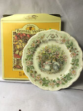 """Royal Doulton BRAMBLY HEDGE c Summer Plates 8"""" New Old Stock"""