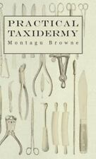 Practical Taxidermy - A Manual of Instruction to the Amateur in Collecting, Pres