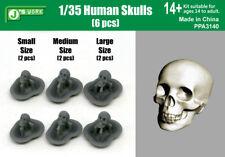 1/35 Human Skulls Resin Model kits (Small: 2pcs, Medium: 2pcs, Large: 2pcs)