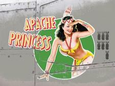 Apache Princess Vintage War Aeroplane Classic Pin-up Large Metal/Steel Wall Sign