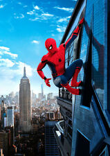 The Amazing Spider Man D A1 High Quality Canvas Art Print