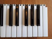 Synth keys for Alesis Micron/Ion, Korg MS2000, Nord Lead, Virus Indigo & others